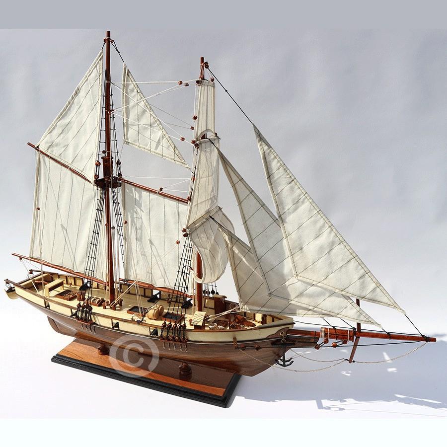 Thuyền Gỗ HARVEY