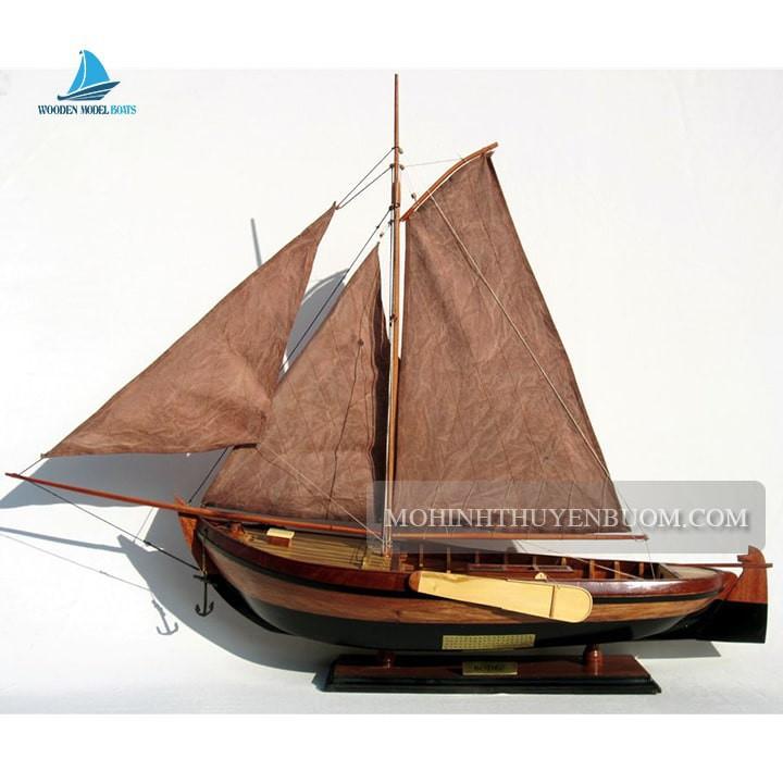 Tàu Thuyền Truyền Thống BOTTER (BELGIUM)