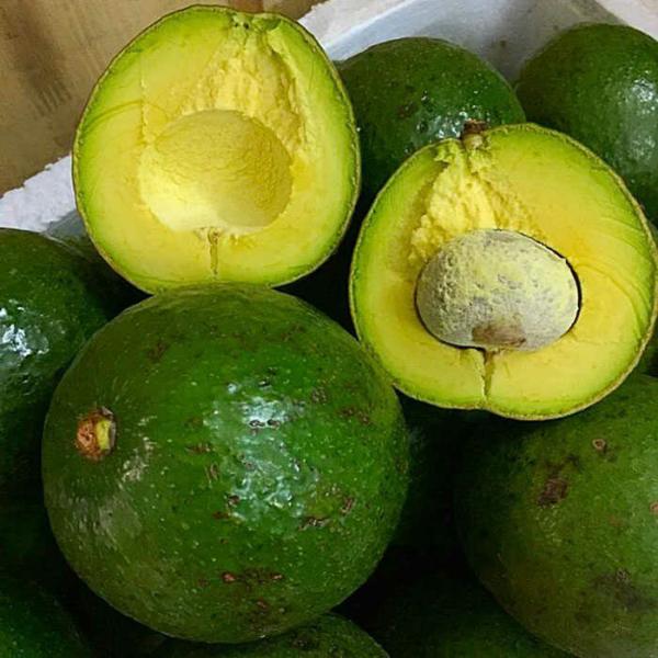 Thực Phẩm - Trái Cây